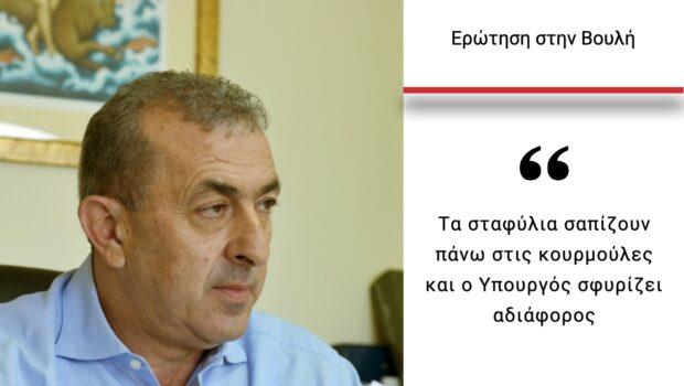 Σωκράτης Βαρδάκης: «Να βρεθεί άμεσα λύση στο μείζον πρόβλημα της αδιάθετης #σουλτανίνας»